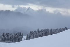 Wettersteingebirge - view from Geroldsee (MC-80) Tags: geroldsee wagenbrüchsee wettersteingebirge karwendel gerold krün