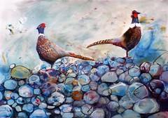 Pheasants (Bella 44) Tags: pheasant pastel mixedmedia bellabee