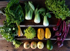 Suzie's CSA box, Week of Jan. 9 - 15