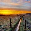 Little Vein #benheinephotography #nature #sunset #freeze #rochefort #belgique #belgium #winter (Ben Heine) Tags: ben heine photography benheinephotography composition light smartphone nature landscape beauty beautiful photo photographie art ifttt instagram