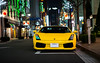 Gallardo (ayeshonline) Tags: lamborghini gallardo v10 carsoftokyo car cars city ginza automotive auto night tokyo tokyonight japan
