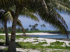 Falealupo (Savai'i) Samoa, Südsee - durch eine Hurrikan 1990 zerstörte Kirche auf der Halbinsel Falealupo / Destroyed church by a hurricane in 1990 on the peninsula Falealupo (cd.berlin) Tags: samoa 2009 wst ws pazifik pacific tropen südsee apw samoan islands insel polynesian polynesien savaii falealupo kirche zerstörtekirche church destroyedchurch hurrikan hurricane palmen palmtrees zerstörtesgebäude destroyedbuilding cdberlin roundislandtrip inselrundfahrt traumziel dreamdestination holiday worldtraveler traveler travel nofilter traveljunkie instagram