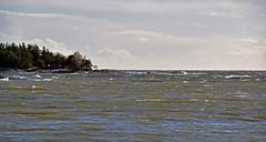 Lake Vänern a stormy day at Hammarö near Karlstad. Sweden (andantheandanthe) Tags: karlstad sweden hammarö vänern stormy windy kuling water vatten sjö sea hav waves skoghall