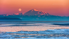 Mount Baker Full Moon At Sunset (PIERRE LECLERC PHOTO) Tags: moon mountbaker baker mountain winter sunset peak snow ice boundarybay britishcolumbia canada washington fullmoon supermoon shore sea cold landscape nature lowtide westcoast bc pierreleclercphotography canon5dsr scenic travel snowcappedmountain volcano water pacificocean