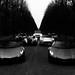 [SHOOTING] Lamborghini Aventador 50° anniversario Roadster & Lamborghini Aventador SV Roadster