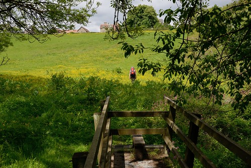 003-20150526_Vale Glamorgan-Heritage Trail 7-crossing stream on S side of Llandough-Julia Kaye