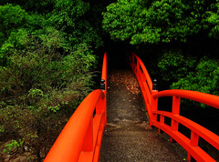 (-Michik-) Tags: bridge red green japan temple japanese  nippon  torii  nihon mistic        taisanji sanshinzan