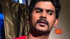 Bommalattam Tamil Serial (Vijaytamilserial) Tags: photo tamil serial suntv actres bommalattam vijaytamilserial tamilserial