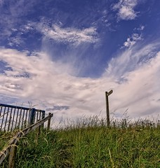 Signpost in the sky (jack cousin) Tags: wood york grass wooden nikon yorkshire rail lookingup railings embankment d610 towton on1photos