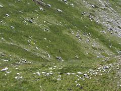 Escursionismo Marsicani - Monte Marsicano