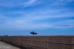 2015 Summer #3 (Yorkey&Rin) Tags: summer japan surfer july bluesky olympus enoshima  kanagawa rin sunnyday   2015  chigasaki  em5   lumixg20f17 pc236818
