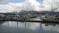 One of several cruise ships we saw in the Seward harbor