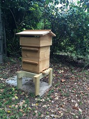 Customers Warre beehive