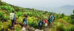 DSC06351 (Ninara31) Tags: africa nyiragongo volcano virungamountains virunga