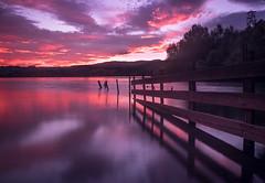 Fire water (lizcaldwell72) Tags: trees hawkesbay newzealand sunset reflection sky water longexposure laketutira light