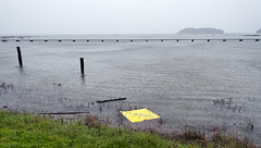 """flooded"" sign . . . in the flood water (so1150) Tags: nikon d3 28300mm kingtide chinacampstatepark flood sign water ironic marin county"