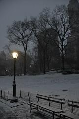 Central Park New York (geraldineh.dutilly) Tags: snow centralpark newyork winter white light