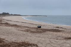 Sunset Beach on a rainy day (kucheryavchik) Tags: america atlantic capemay east eastcoast nj newjersey usa coast ocean roadtrip roadtrip2016 unitedstates us