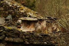 Truébanos (Vanessa RG (Vanessa Valkyria)) Tags: asturias landscape paisaje nature naturaleza forest woods bosque