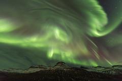 Last night aurora borealis (*Jonina*) Tags: iceland ísland faskrudsfjordur fáskrúðsfjörður auroraborealis northernlights norðurljós night nótt sky mountains fjöll digritindur longexposure jónínaguðrúnóskarsdóttir january27th2017 25faves himinn 50faves 500views 1000views 1500views