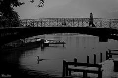 Le Pont des Amours (Frédéric Pactat) Tags: nikon d750 d 750 afs nikkor fx 2470mm f28g ed 2470 24 70 f28 28 winter snow hiver neige bw black white noir et blanc nb bridge street photography annecy le pont des amours haute savoie