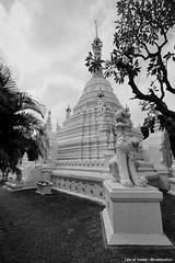 Keep Dreamin' (Swebbatron) Tags: watbeppharam chiangmai wat temple buddhism city thailand asia southeastasia travel lonelyplanet 2015 lifeofswebb blackandwhite canon 1100d radlab gettotallyrad
