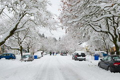 our street looks different... (Ben McLeod) Tags: oregon portland sellwood winterstorm snow