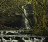 Gibson's Cave (Nick White2009) Tags: bowlees gibsons cave teesdale england river trees uk britain green rocks rural countryside