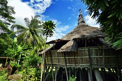 320/365 Visit the Bidayuh Village in Boneo island (Xiaole wy & JV William) Tags: canon eos 7d tokina 1116mm f28 atx pro color travel photography bidayuh village borneo island long house gawai harvest festival trees blue sky hot afternoon sun bright light out door