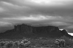 sOLACE sOUGHT iN a sONORAN sTORM 38 (wNG555) Tags: 2017 apachejunction apachetrail superstitionmountain superstitionwilderness sonorandesert desert cactus sky storm clouds winter olympusfzuikoautos38mmf18 arizona phoenix