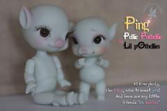 CCC Ping & Da Bellies (chartar_69) Tags: pigdoll charlesstephan lilpotbellies pigbjd charlescreaturecabinet pigballjointeddoll dabellies piganthro pingpellypotbellie
