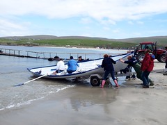 Oops! (nz_willowherb) Tags: race boats see scotland tour visit rowing skiff shetland tombolo 2015 bigton stniniansisle to go yoal stniniansbeach