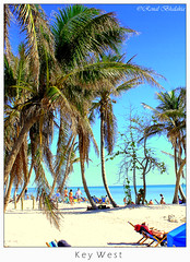 Key  West Beach (Renal Bhalakia) Tags: travel beach water landscape florida outdoor scenic olympus palmtree keywest atlanticocean travelogue olympusc750uz olympus750uz keywestbeach renalbhalakia
