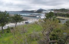 Co-Jejudo-Seogwipo-Falaises de Jusangjeolli (3) (jbeaulieu) Tags: coree falaises jejudo seogwipo jusangjeolli