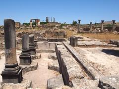 P5261303 (lnewman333) Tags: africa ancient northafrica historic worldheritagesite morocco fez maroc maghreb column fes volubilis romanruins unescosite 1stcenturyad