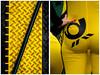 GelbSchwarz.jpg (fotomanni.de) Tags: fotomodell gelb hinterteil kabelbrücke model montage norisring po post posthorn schwarz bayern franken mittelfranken nürnberg popo diagonal