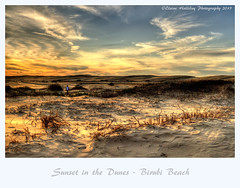 Sunset in the Dunes, Birubi Beach, Anna Bay, NSW (loobyloo55) Tags: sunset coast sand australia sanddunes