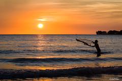 Casting a net at sunset (robert_vine) Tags: ocean sunset sea orange sun net beach water yellow fishing au australia cast casting northernterritory fanniebay
