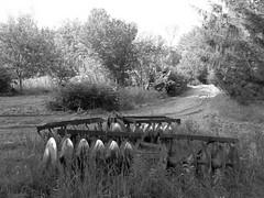 2015-08-04 2. John Meader harrow in darker b&w  (1 of 1) (LarryJ47) Tags: road trees summer bw grass photography gold farm farming fine machine orchard dirt elite late harrow