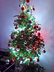 Christmas is coming (Heaven`s Gate (John)) Tags: christmas tree lights baubles season festivities england red white johndalkin heavensgatejohn santaclaus fatherchristmas night atmosphere