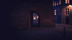 001-365 Copenhagen Winter Soul (cohenvandervelde) Tags: 35mm 365project 550d apsc city cohenvandervelde copenhagen creativecommons dof denmark scene scout snap souls superkilen worldstreetphotography blue canon color colour depthoffield gold lights people primelens purple silhouette street streetphotography streettog sunset tunnel