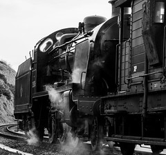 Swanage Railway - Winter Warmup 2016 (Ben_Broomfield) Tags: 31806 freight waggons waggon swanage swanagerailway dorset d3300 steam smoke signal train track trees trains wagon winter warm up ben71824 ben broomfield nikon class 33 tank engine mongul railwayline railway wagons driver december event heritage lense lens lenses
