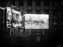 Between Art (René Mollet) Tags: renémollet fog basel blackandwhite bw art outdoor monchrom merian street streetphotography picture zuiko streetart between