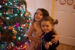 DSC_2257 (seustace2003) Tags: baile átha cliath ireland irlanda ierland irlande dublino dublin éire božič nollaig noël natale navidad kerst