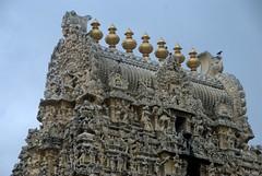 Details of the Carvings on the Temple Spires (VinayakH) Tags: ekambaranathartemple kanchipuram india tamilnadu temple sculptures historic chola vijayanagaraempire religious hindu shiva