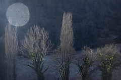(teambula) Tags: reflections flaw blemish beauty blue morning winter dawn teambula 2017