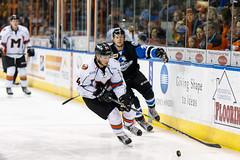 "Missouri Mavericks vs. Wichita Thunder, January 7, 2017, Silverstein Eye Centers Arena, Independence, Missouri.  Photo: John Howe / Howe Creative Photography • <a style=""font-size:0.8em;"" href=""http://www.flickr.com/photos/134016632@N02/32129246781/"" target=""_blank"">View on Flickr</a>"
