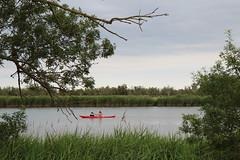Recordant l'estiu (Albert T M) Tags: kayak migdedosrius reservanatural santperepescador altempordà fluvià catalunya catalonia catalogne cataluña piragua