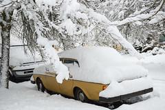 buried (Ben McLeod) Tags: oregon portland sellwood sellwoodbluff winterstorm car snow volvo