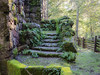 Otherworldly (glo photography) Tags: california glenellenca gloriasalvanteglophotography jacklondon jacklondonstatepark northerncalifornia sonomacounty wolfhouse fence ferns green mansion moss ruins stairs statepark stone winecountry